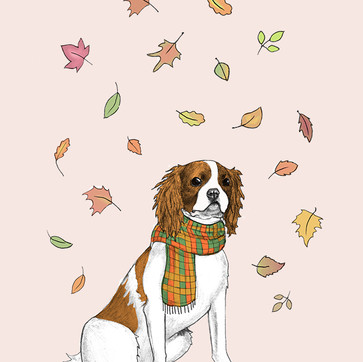 Autumn Walkies.jpg