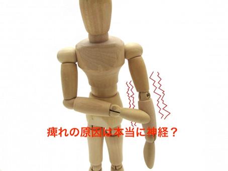 痺れの原因は本当に神経?