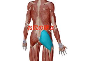 腰痛と関係
