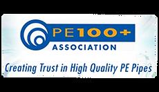 PE 100.png