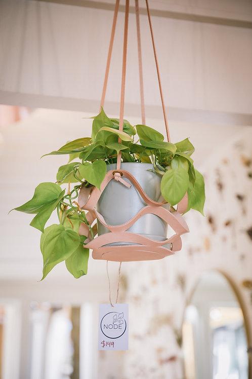 Handmade Leather Plant Hangers