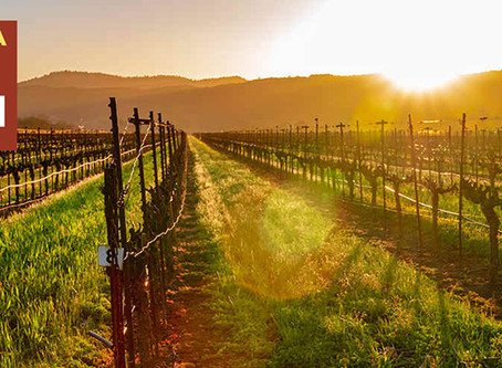 What to do during Wine Month in California in the time of Covid.