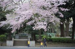 2017年4月 東京都台東区