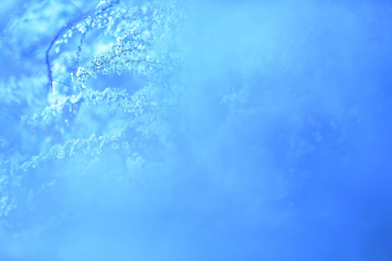 2017年4月  東京都立川市