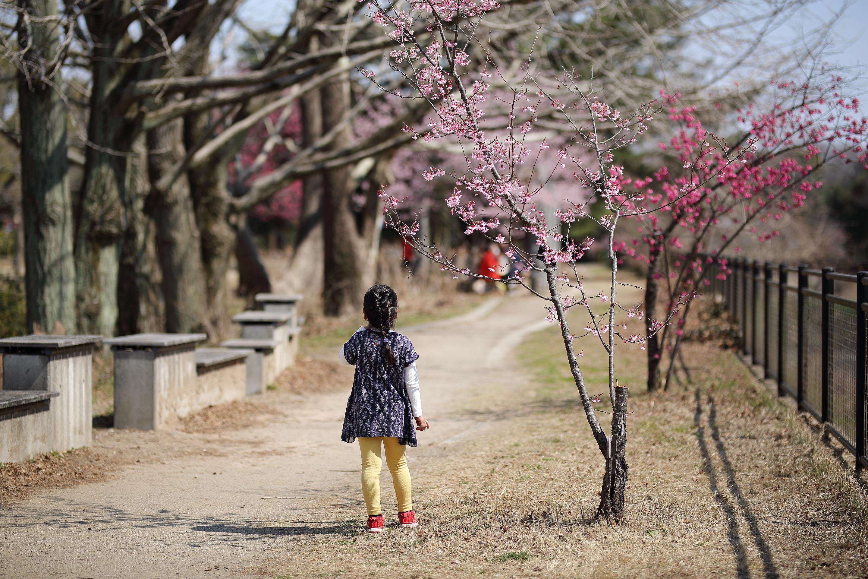 2019年3月 東京都立川市