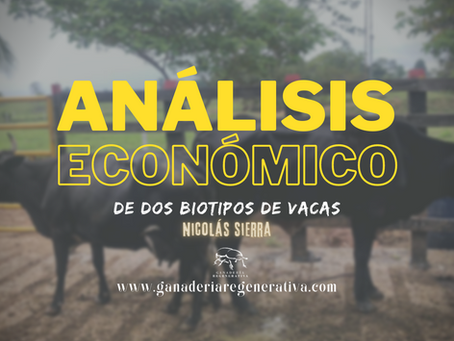 Análisis económico de dos tipos de vacas