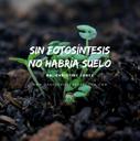 Sin_fotosíntesis_no_habría_suelo.png