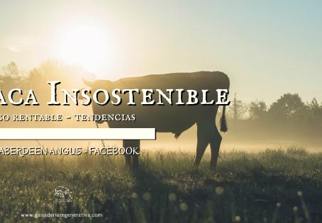 Vaca insostenible