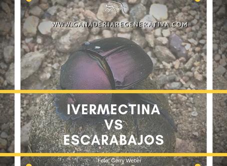 Ivermectina vs Escarabajos