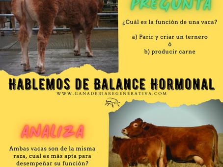 La función de la vaca