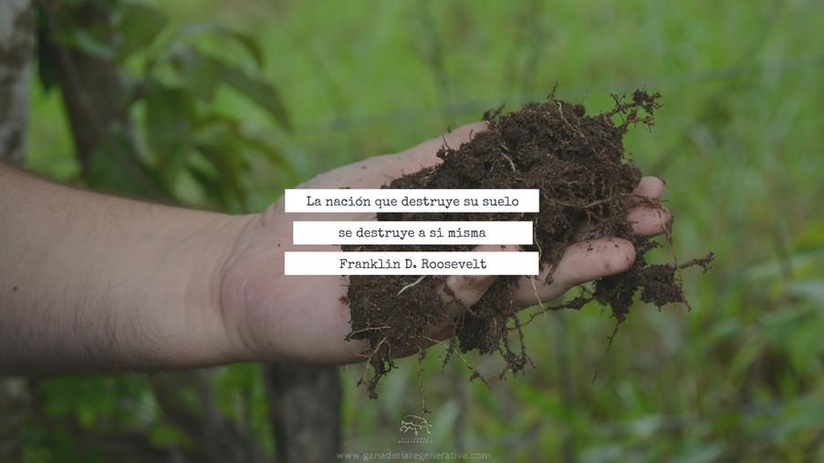 La sociedad que destruye su suelo.jpg