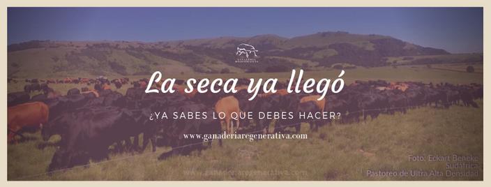 La_seca_ya_llegó.png