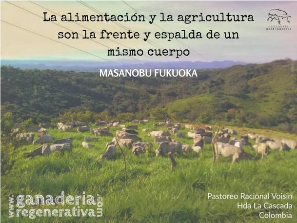 alimentacion y agricultura.jpg