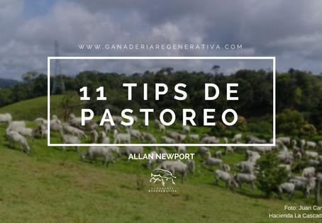 11 Tips de Pastoreo
