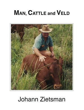 Man Cattle and Veld