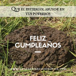 Feliz_cumpleaños.PNG