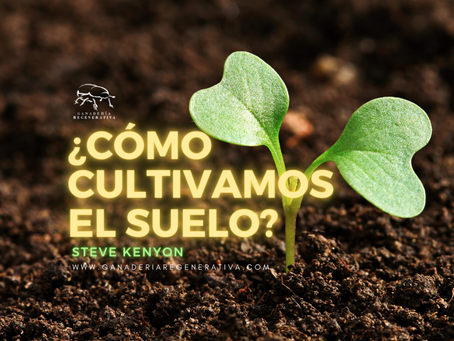 ¿Como cultivamos el suelo?