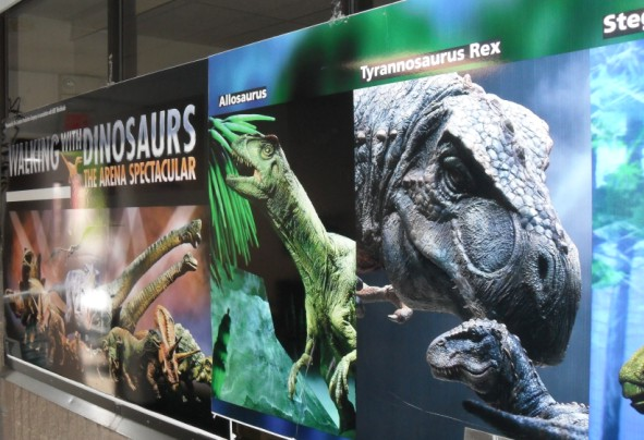 dinasaur display