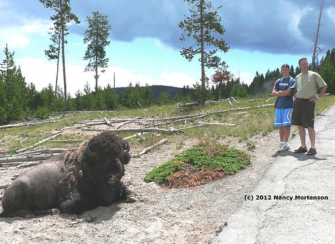 bear spray rental in Yellowstone National Park