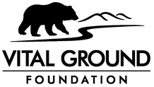 vital ground logo.png