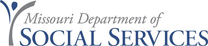 DSS Logo.jpg