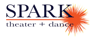 CLEAR SPARK LOGO 2017.png