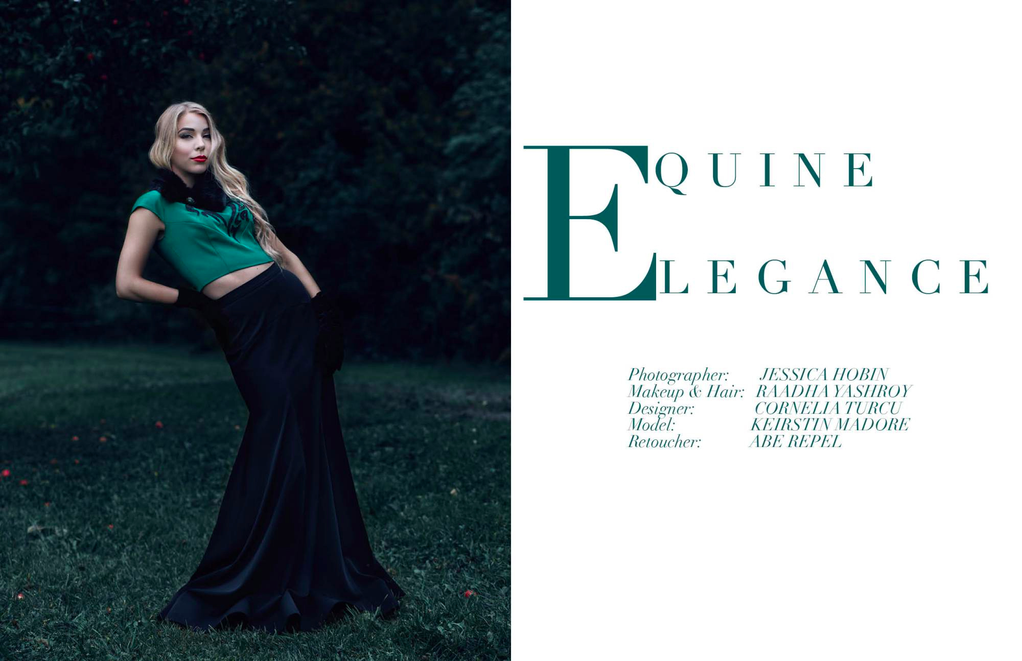 Equine Elegance - Krowd Webtorial