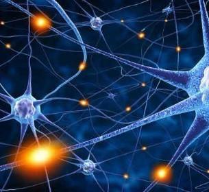 Intramuscular Stimulation – A Neuropathic Model