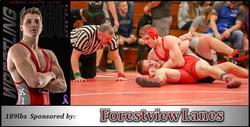 189 Sponsor 2018-19 (Forestview)