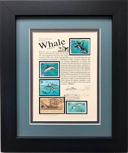 "Stamps ""Whales"" Framed Stamp Art"