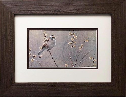 "Robert Bateman ""White Throated Sparrow"" FRAMED Art"