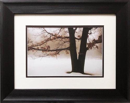 "David L. Winston ""Tranquility"" Custom Framed NEW ART photograph"