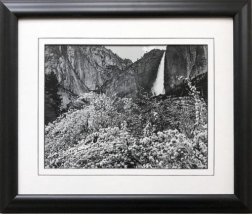 "Ansel Adams ""Apple Blossoms""Upper Yosemite Falls  Framed NEW ART photography"
