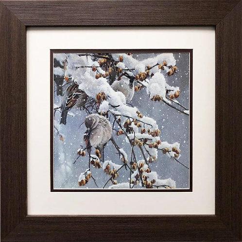 "Robert Bateman ""House Sparrows and Bittersweet"" FRAMED Art"