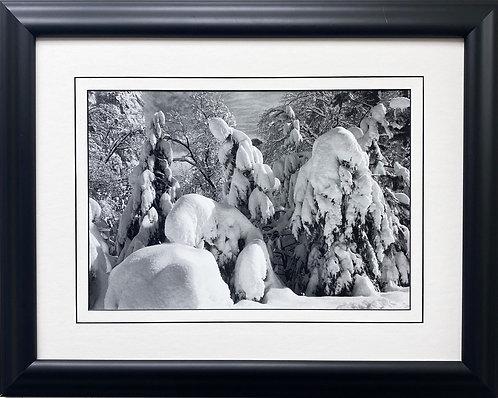 """Ansel Adams """"Trees in Snow, Yosemite"""" Custom Framed NEW ART"""