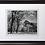 "Thumbnail: Ansel Adams ""Half Dome Oak Trees Autumn"""