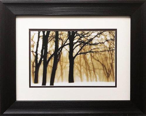"David L. Winston ""Past Dreams"" Custom Framed NEW ART photograph"