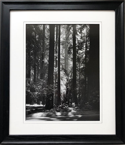 "Ansel Adams ""Redwoods"" Custom Framed NEW lithograph ART Photography Forest Woods"
