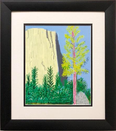 """David Hockney """"El Capitan Yosemite """"NEW Custom FRAMED ART"""