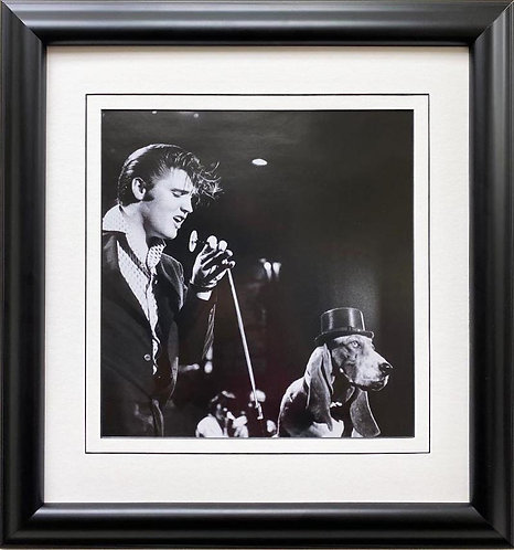 "Elvis Presley ""Sings to Hound Dog, NBC "" Framed Litho Art"