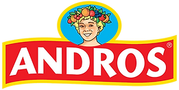 logo-andros-png.png