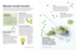 THE BOOK OF MATCHA 3.jpg