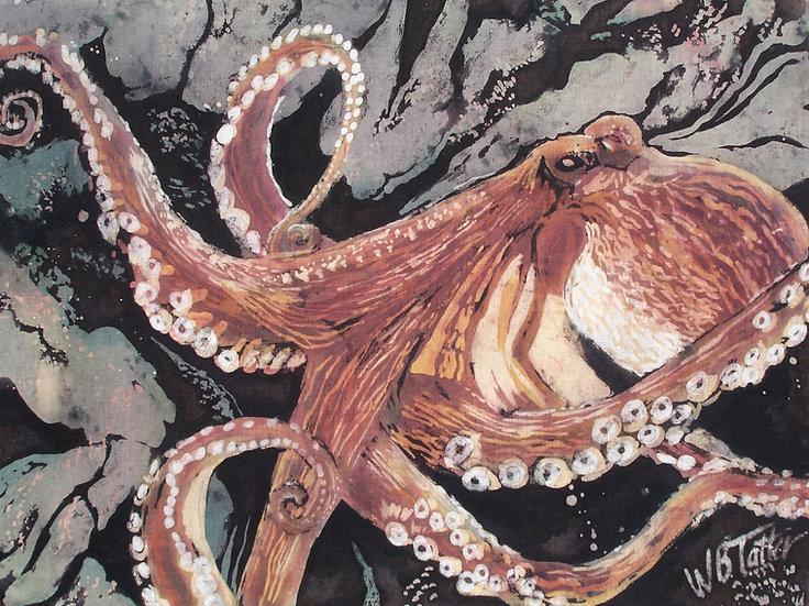 Octopus in Browns
