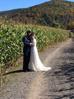 corn field couple