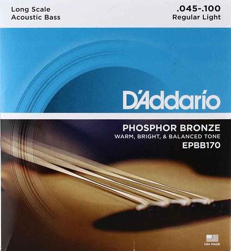 D'Addario EPBB170 Light Acoustic Bass