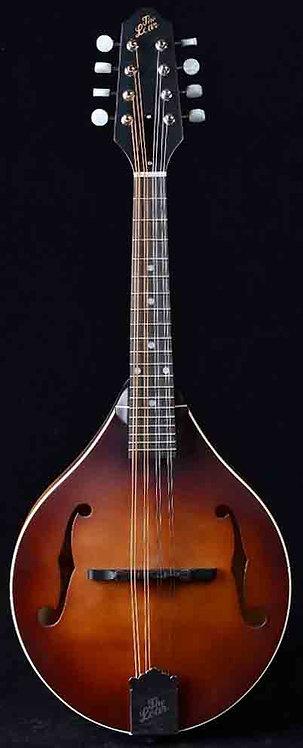 "The Loar LM110BRB ""Honey Creek"" Mandolin NEW!!!"