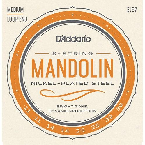 D'Addario EJ67 Medium Nickel Mandolin (4 Pack)