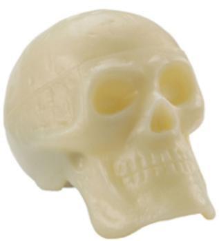 Skull Shakers NEW!!!