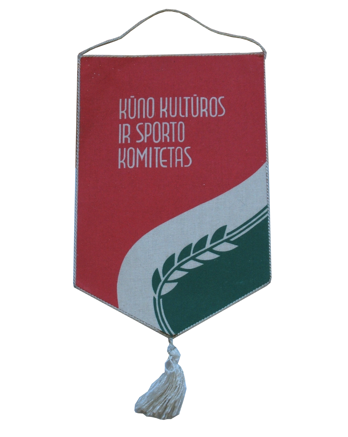Sport and Health Pennant