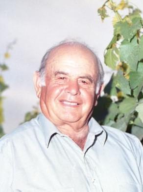 Michele Scarfone